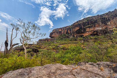 Kakadu National Park - Flickr/Marc Dalmulder