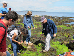 Delegates on the rocky shore with Professor Steve Hawkins